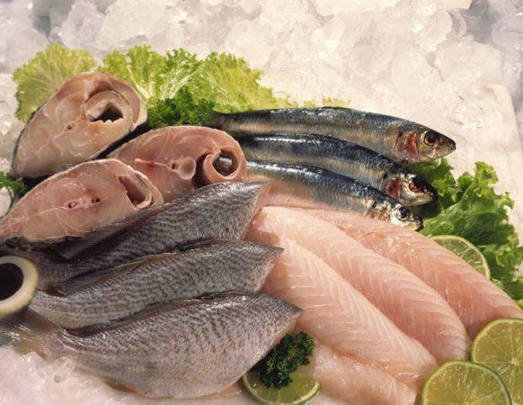 Alimentação saudável: peixe é uma ótima fonte de proteína