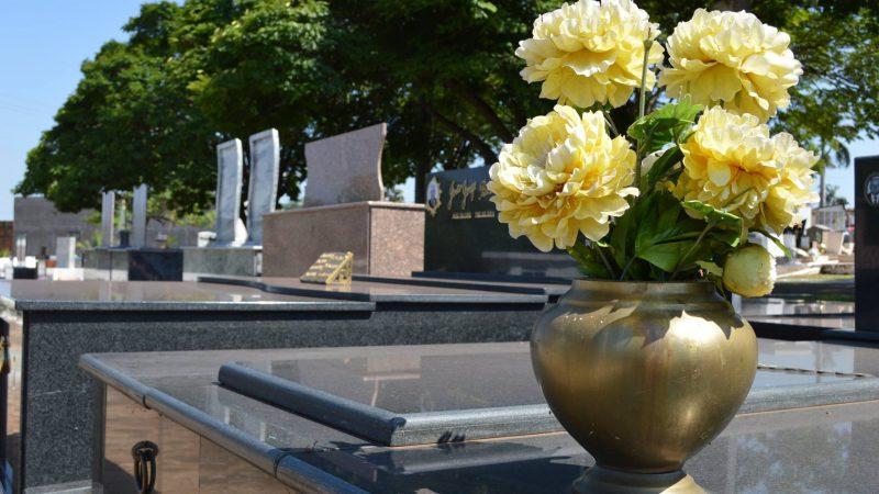 Vasos de flores que acumulam água devem ser evitados no Dia de Finados