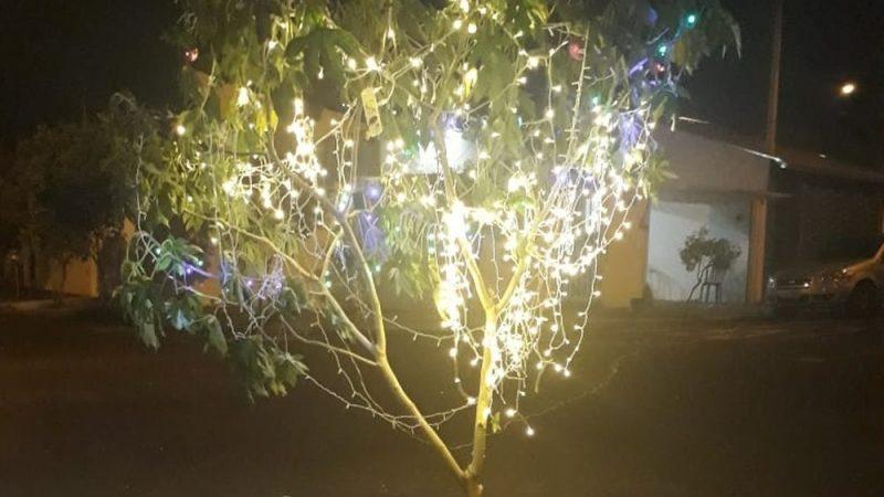 Moradores colocam árvore de Natal iluminada dentro de buraco para cobrar conserto em rua