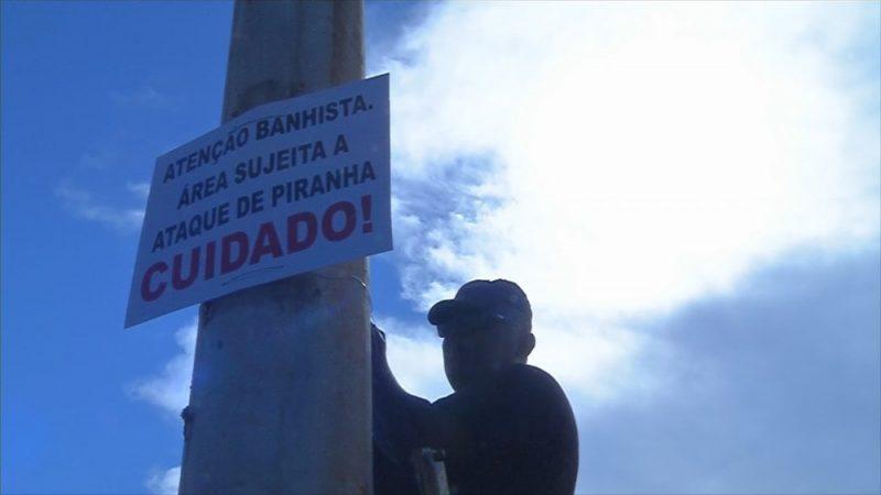 Placas alertam turistas sobre ataques de piranhas na praia de Pereira Barreto
