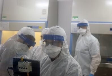 Na região, 55,8% dos infectados com coronavírus estão curados