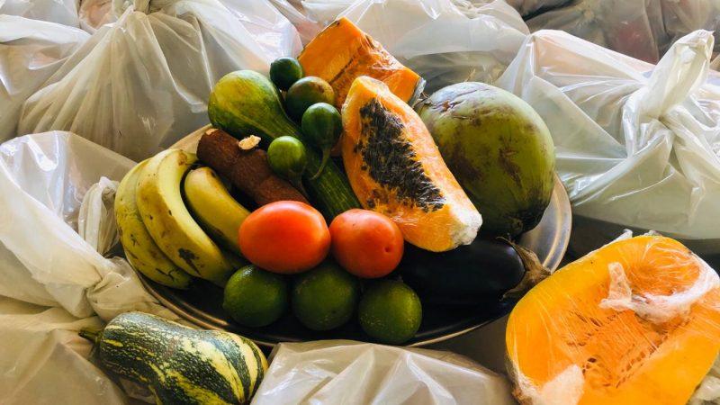 Social de Aracanguá inicia distribuição de frutas, legumes e verduras
