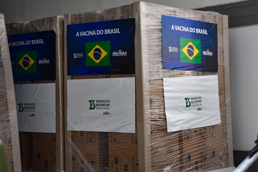 Butantan entrega 1,1 milhão de doses da CoronaVac ao Ministério da Saúde e paralisa produção da vacina por falta de matéria-prima